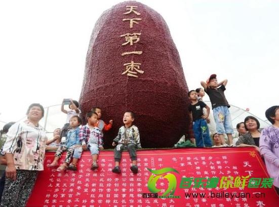 郑州现天下第一枣 盘点栆如何保存