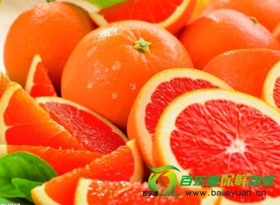 橘子不适合放在冰箱中保存,容易冻伤。在箱或筐的底部,垫上两张大报纸,再用裁好的报纸,逐一包好每一个橘子,然后将包好的橘子依次排列在箱内放好。一层橘子隔一张大报纸,最多只能叠五六层,因为太多层易压坏。此法最好用报纸或其他吸湿性强的纸,这样才能使橘子保持水分,不致于干瘪。橘子放干了,可将干橘子放于凉开水中浸泡24小时,再剥皮就好剥了。如果浸泡48小时,橘肉水分增加,使橘子恢复原状,不仅好剥皮,而且吃起来更加鲜美。