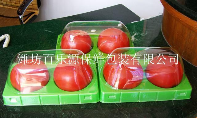 2014年百乐源番茄保鲜技术专用保鲜盒