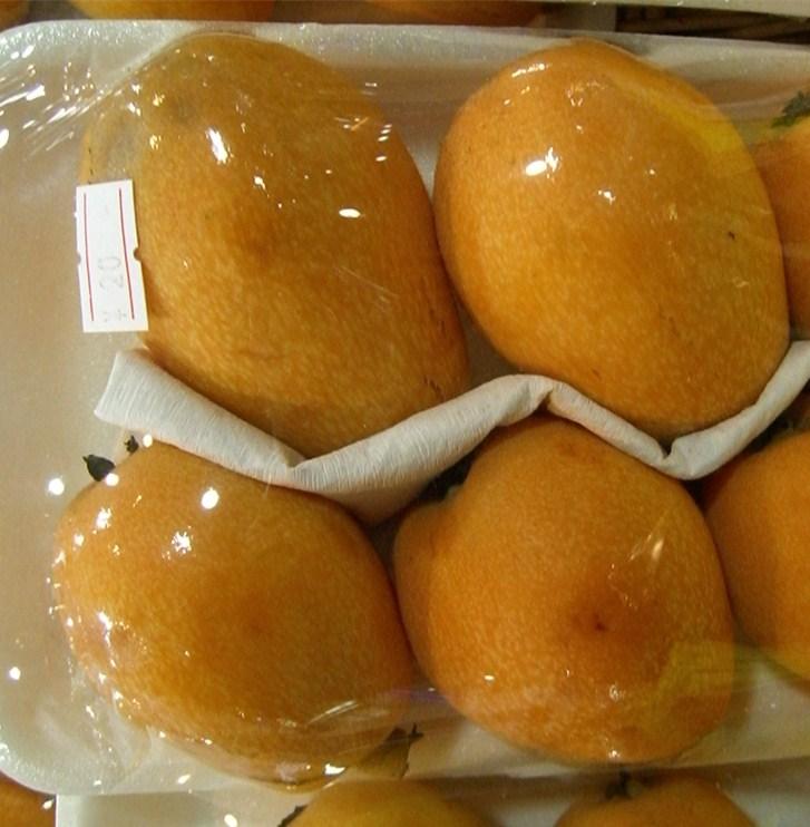 芒果物理活性保鲜盒